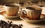 coffee-cup-bean