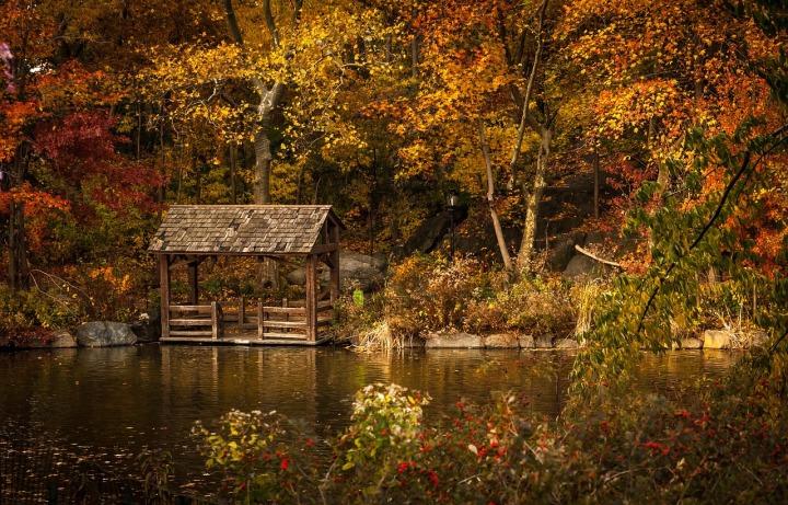 Autumn (Jessie #4)